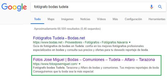 Resultados búsqueda orgánica Google