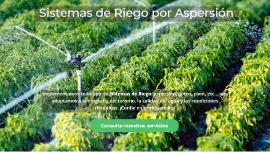 Diseño página web en Alfaro